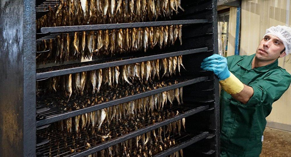 Долг работникам рыбокомбината оплачивает босс под надзором губернатора и обвинителя