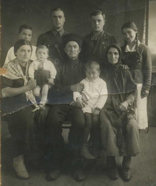 Семья Медоевых