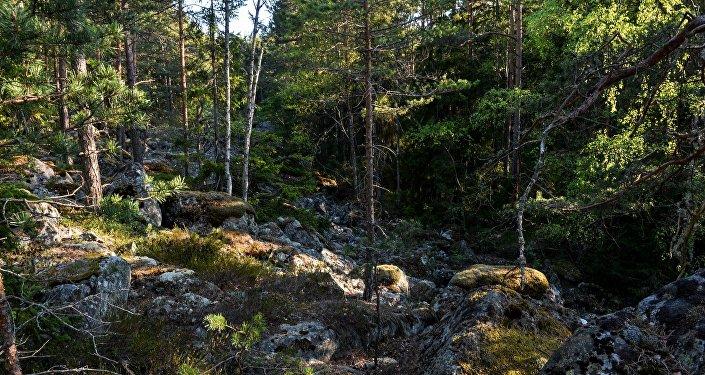 Остров Гогланд в Финском заливе