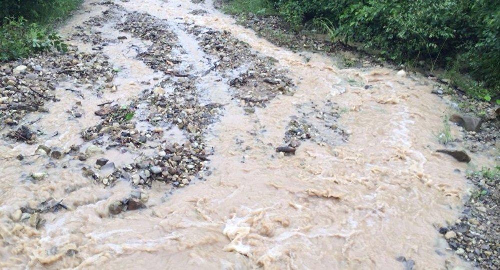 Практически полторы сотни человек стали жертвами наводнения вСеверной Корее