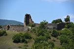 Дмениская крепость