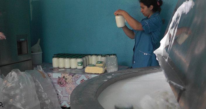 Молочные продукты из высокогорного Елтура.Кадры производства