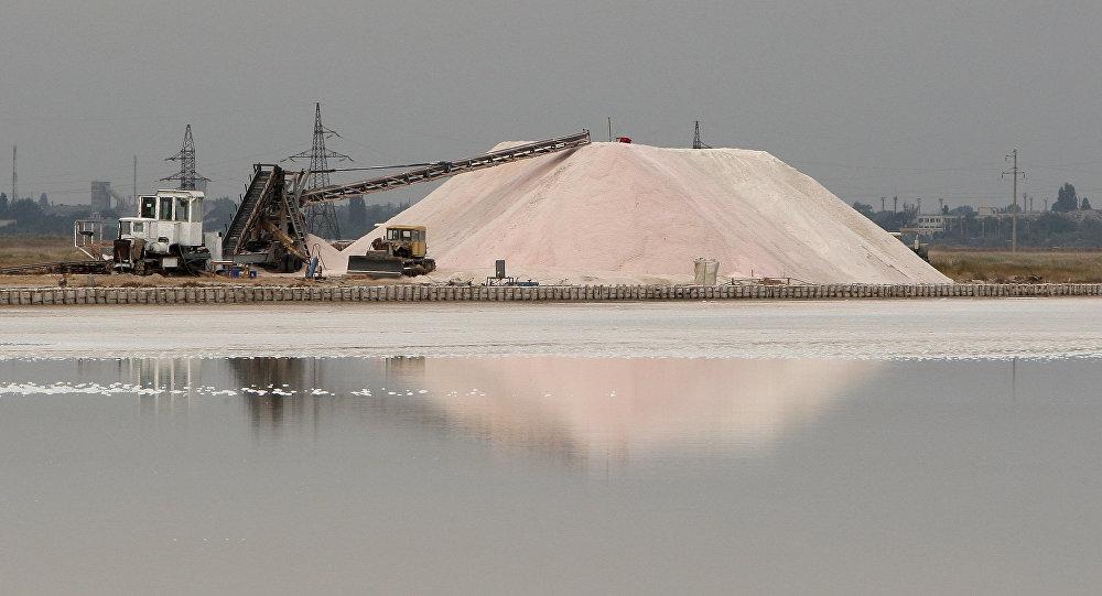 В РФ эмбарго посыпают солью
