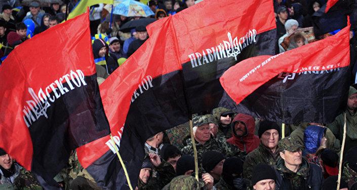 Митинг Правого сектора у здания администрации президента Украины