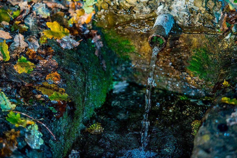 Проезжающие по дороге в село Монастер всегда останавливаются попить воды этого родника.