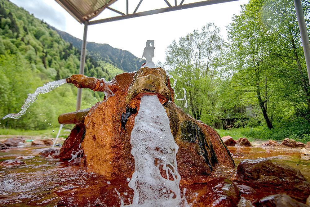 Самый известный в Южной Осетии источник - Багиатский. Около него много лет работает наливочный завод, вода источника - самая потребляемая в республике.