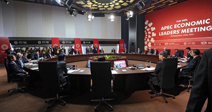 Президент РФ Владимир Путин принимает участие в заседании лидеров экономик саммита АТЭС в Лиме