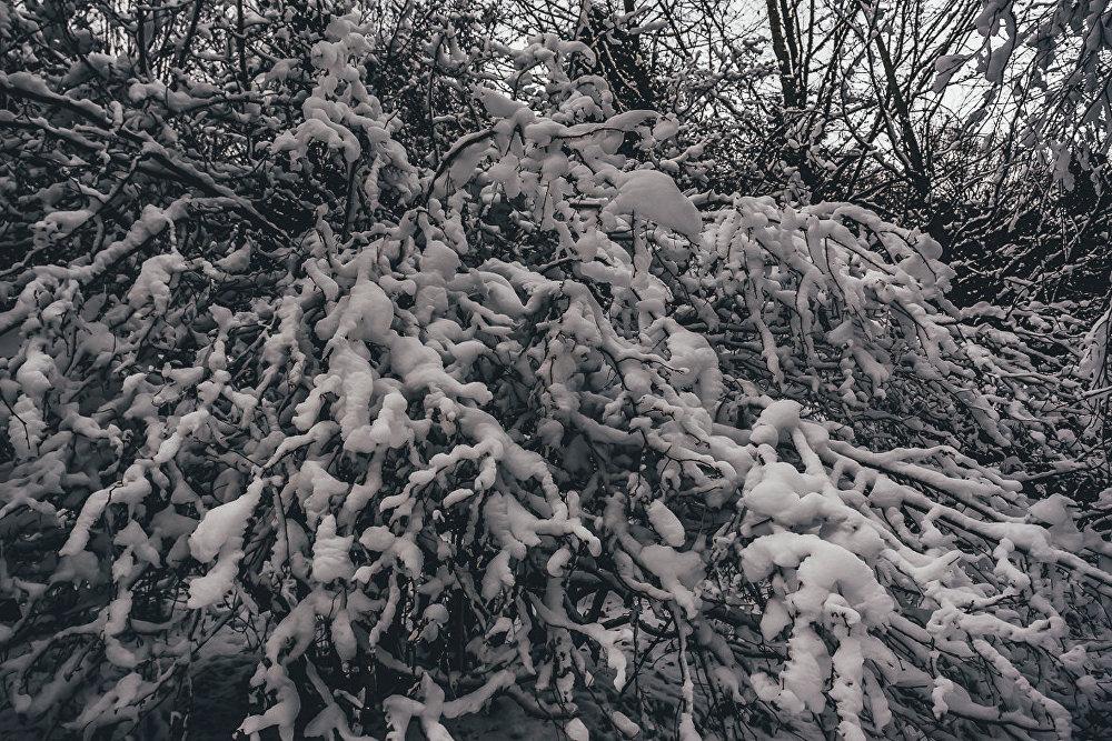 Жители столицы Южной Осетии еще не видели снега, а в горах — настоящая зимняя сказка.