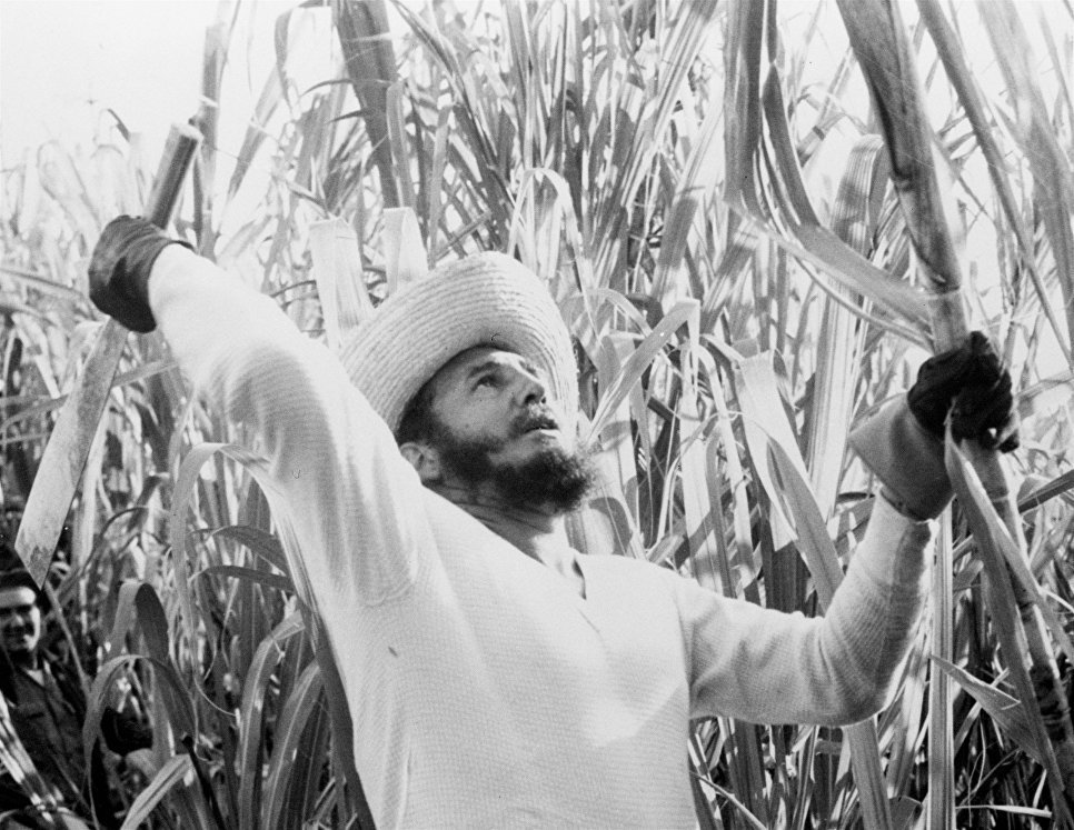 Премьер-министр Кубы Фидель Кастро на рубке тростника. 13 февраля 1961