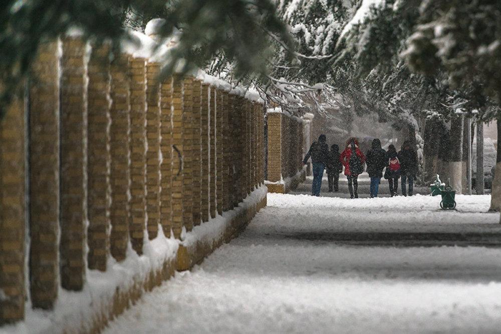 Зима в этом году заявила о себе с самого начала своего первого месяца.