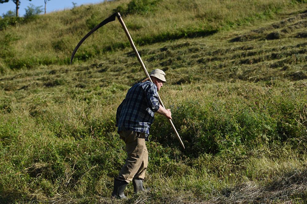 Косарь в деревне Елтура