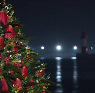 Портреты погибших, свечи и цветы – люди почтили память жертв крушения Ту-154