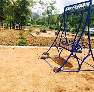 Хосгӕнӕн суадон Дзау-суары цур арӕзт цӕуы фӕлладуадзӕн парк