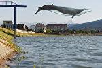 Кит над цхинвальским озером, коллаж