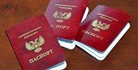 Паспорта граждан ДНР и ЛНР