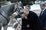 Атамбаев подарил Путину кыргызского скакуна