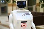 Робот Теодор