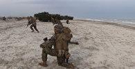 Военные учения Весенний шторм в Румынии