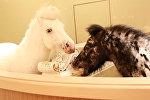 Мрамор, арки и барельефы - как выглядит роскошный музей лошадей в Китае