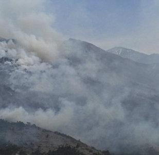 Пожар в Алагире