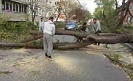Во Владикавказе устраняли последствия шквалистого ветра