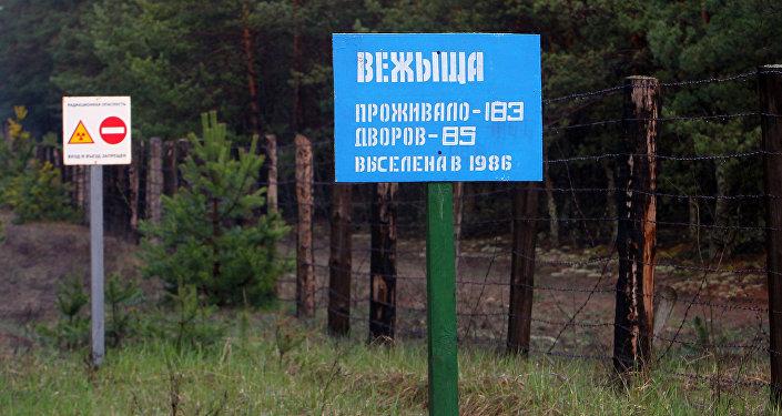 Зоне отчуждения Чернобыльской АЭС