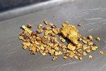 Добыча золота в Забайкальском крае