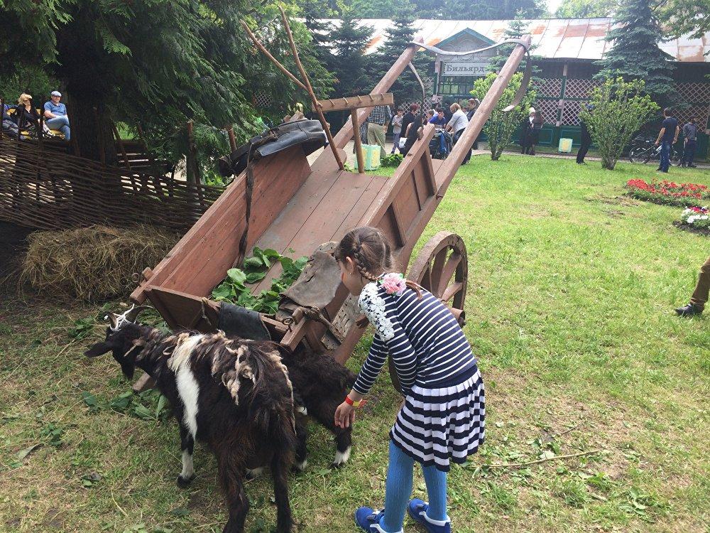 Для самых маленьких был подготовлен необычный сюрприз - дети могли погладить живых козлят