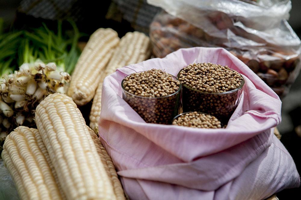 Душистый кориандр, свежая кукуруза