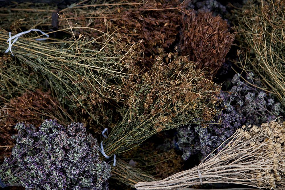 Лечебные травы: душица, зверобой, тысячелистник