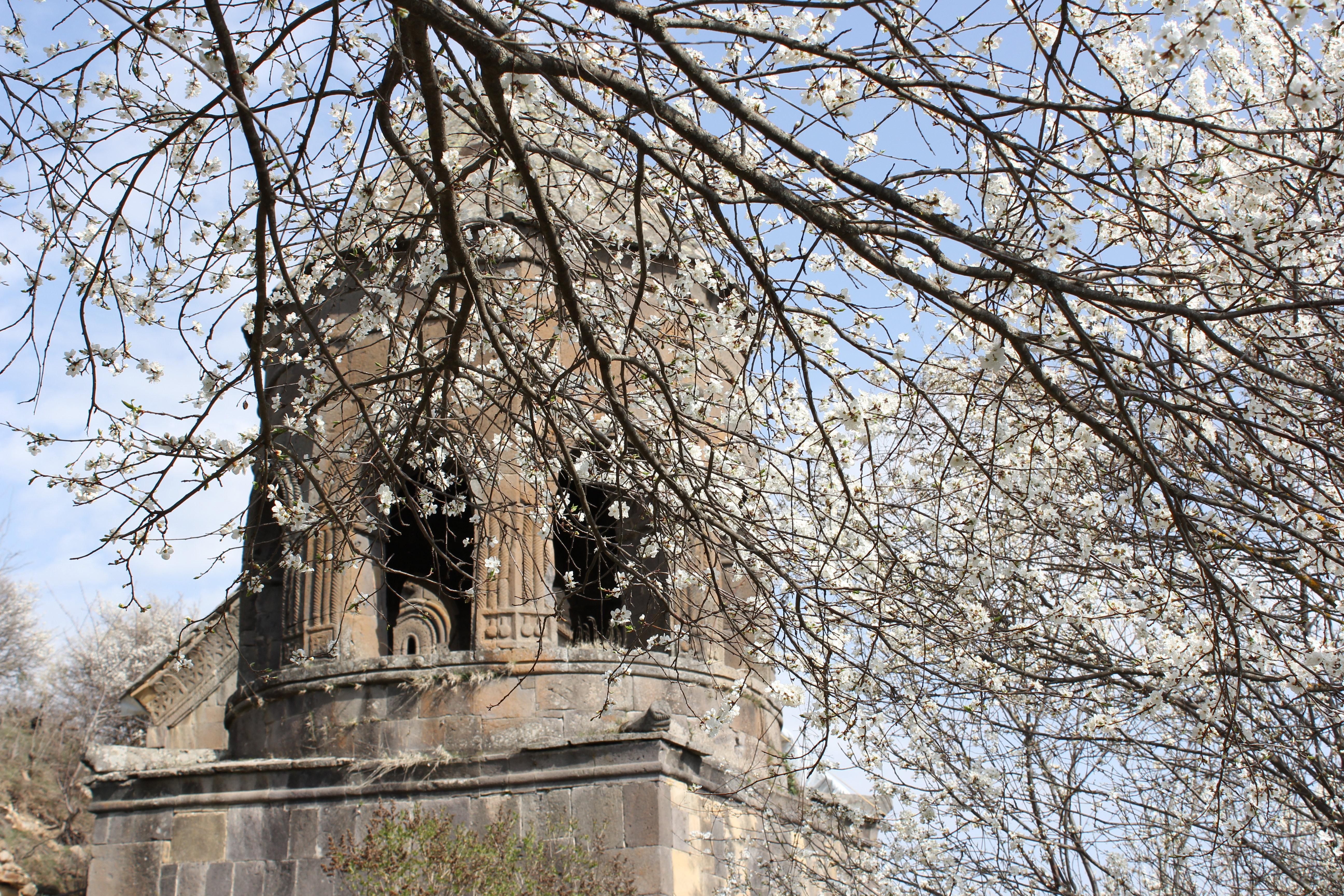 Тирский монастырь в цвету