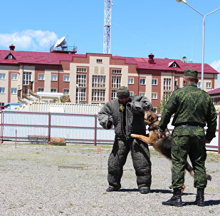 Первенство Пограничного управления ФСБ России в Республике Южная Осетия на лучшего специалиста-кинолога