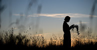 Девушка собирает цветы в поле