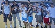 Югоосетинские боксеры