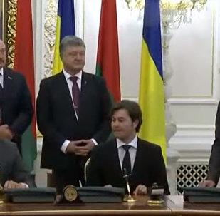 Женщина оголилась во время встречи Порошенко и Лукашенко