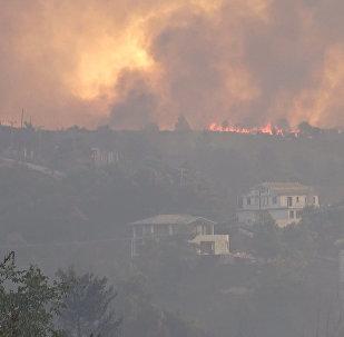 Массовые пожары в Греции