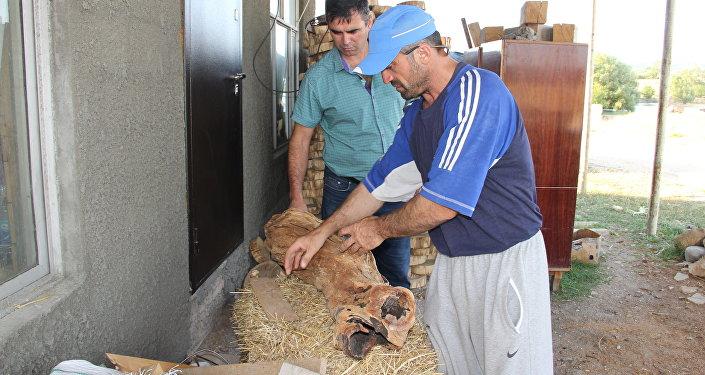 Крестьянско-фермерское хозяйство Шад