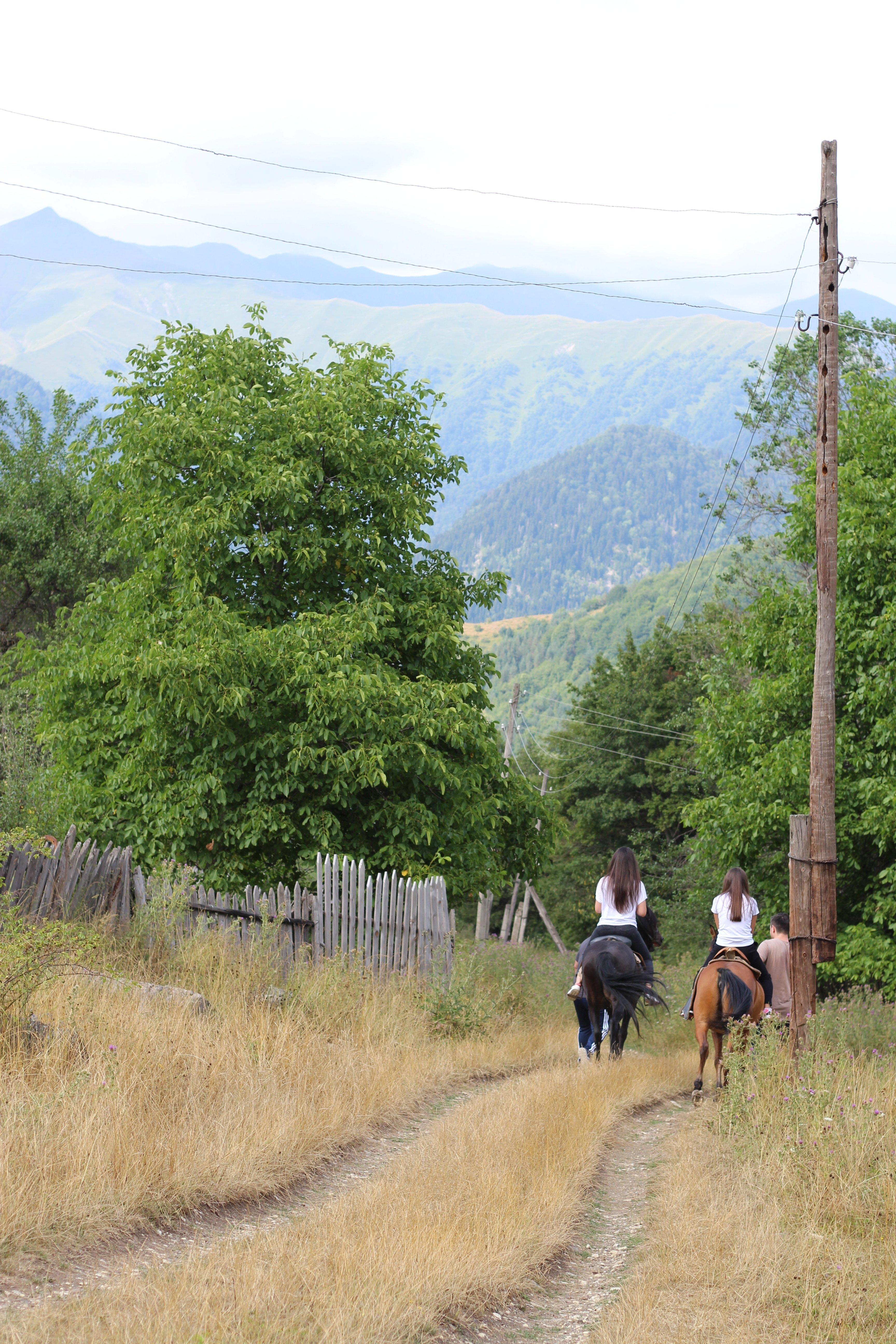 Гостевой дом Алана Парастаева в селении Кроз