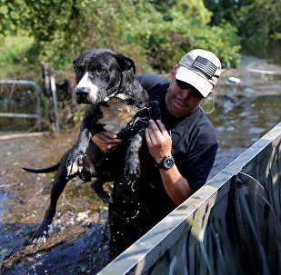 man and the rescued dog