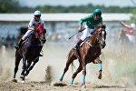 Проведение конных соревнований в Омской области