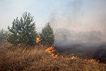 Возгорание сухой травы