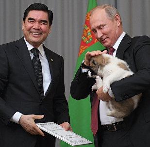 Президент РФ В. Путин встретился с президентом Туркмении Г. Бердымухамедовым