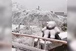 Снег в Наре