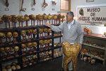 Врач из Лимы творит на человеческих костях - видео