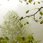 Осень в Шихантуре