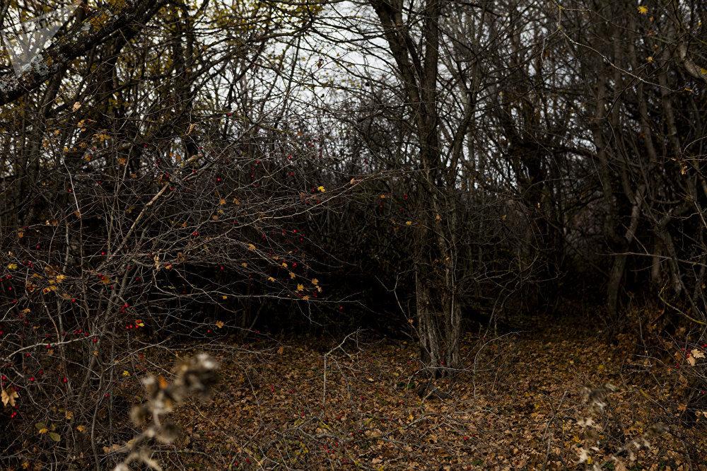 Осень в Южной Осетии