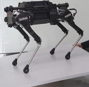 Китайские разработчики создали робособаку Laikago