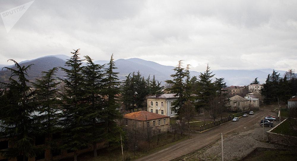 МВД Грузии дало обещание семье погибшего вЦхинвали Татунашвили