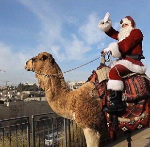 Вместо оленей верблюд: Санта-Клаус  привез рождественское настроение в Восточный Иерусалим