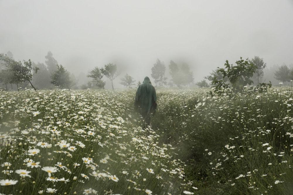 Снимок из серии французского фотографа Alexandre Zindy, победивший в номинации New Talent Award 'Destination'